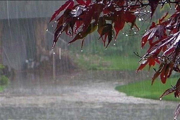 افزایش 20 درصدی بارش در کشور، بارندگی ها در 7 استان منفی است