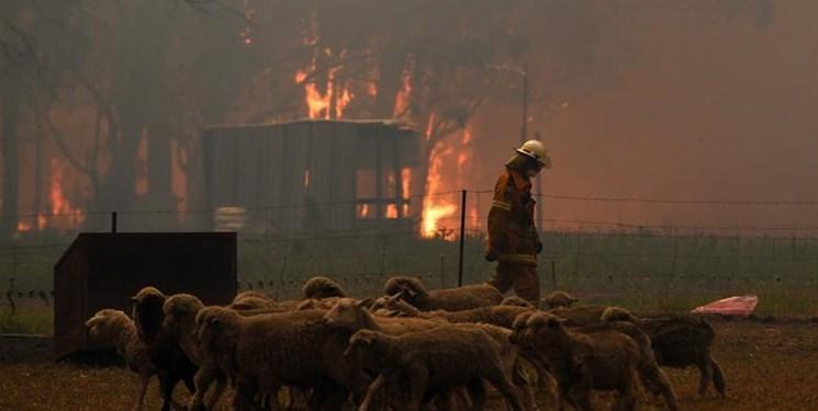تصاویر ماهواره ای از بحران آتش سوزی استرالیا